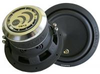 Massive Audio TW 12